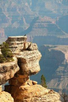 Grand Canyon (via Pinterest)